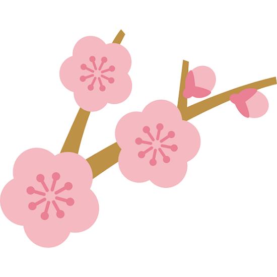 無料梅の花イラスト かわいい無料イラストイラストの描き方