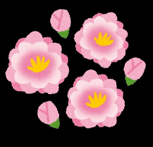 無料フリー桃の花のかわいいイラスト白黒イラスト